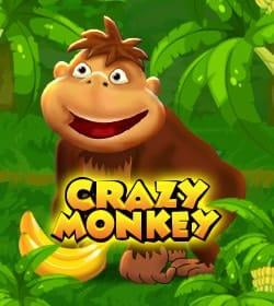 флеш гри crazy monkey